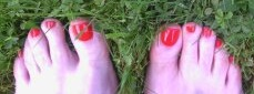 red toes in grass1399831709470